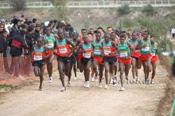 African runners continue to dominate the World Cross Country Championships. © www.photorun.net