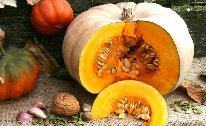 Winter Squash: No Tricks, Just a Treat