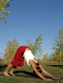 Downward-Facing Dog pose—Adho Mukha Svanasana. © Tim DeFrisco