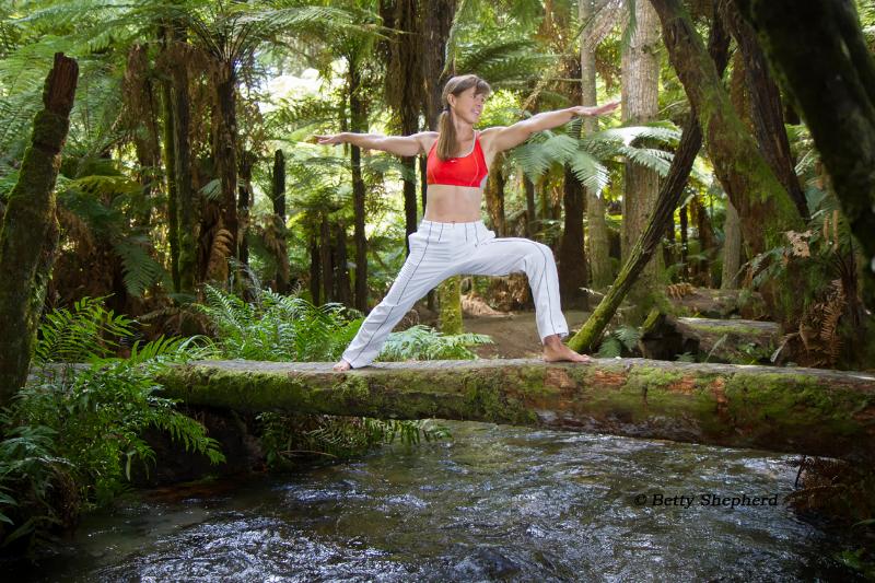 Keep your balance. Whakarewarewa Forest, March 2014, New Zealand. © Betty Shepherd